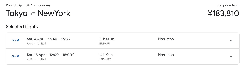 Tokyo (NRT) to New York (JFK)